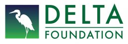 Delta Foundation